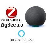 Zigbee Compatible alexa