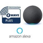 Zwave Compatible Alexa
