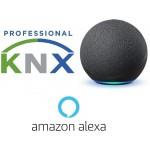 Knx Compatible Alexa
